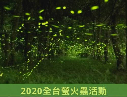 【 2020全台賞螢景點】情侶/親子/家庭生態旅行-活動住宿推薦-螢火蟲季懶人包
